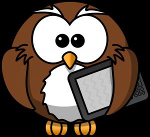 owl-kindle