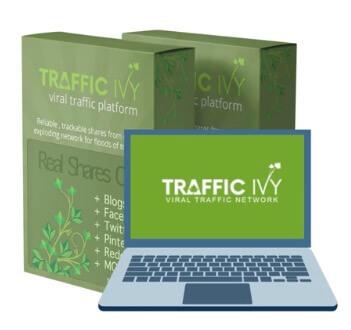 Traffic Ivy-Box